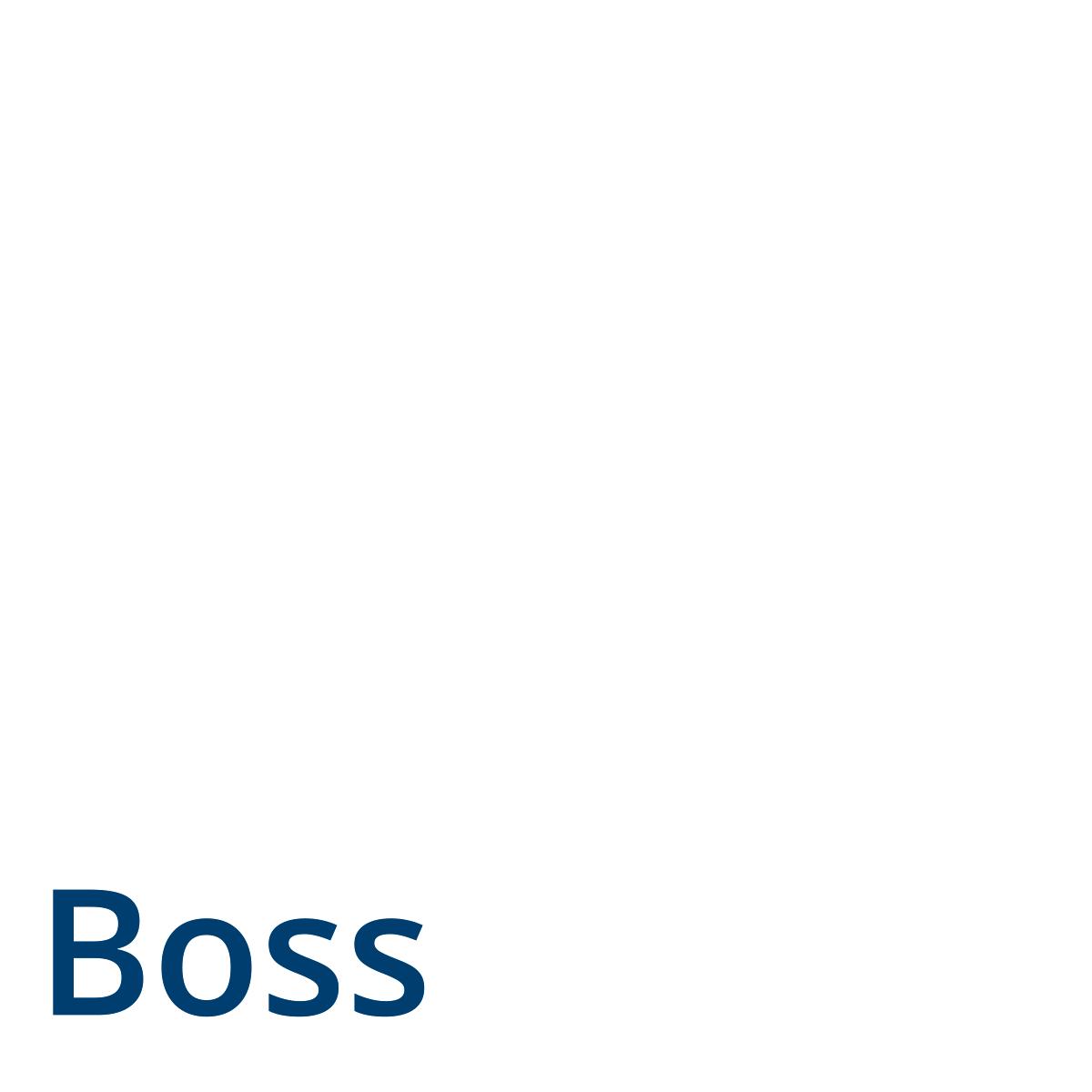 Bossapp